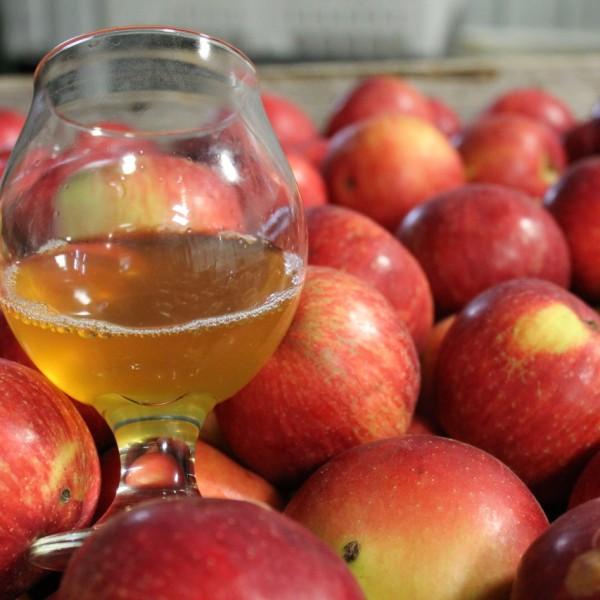 Keepsake Cider Launch at GYST Fermentation Bar MPLS